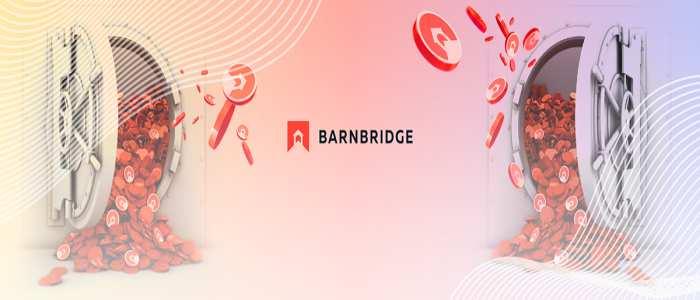 پروتکل BarnBridge